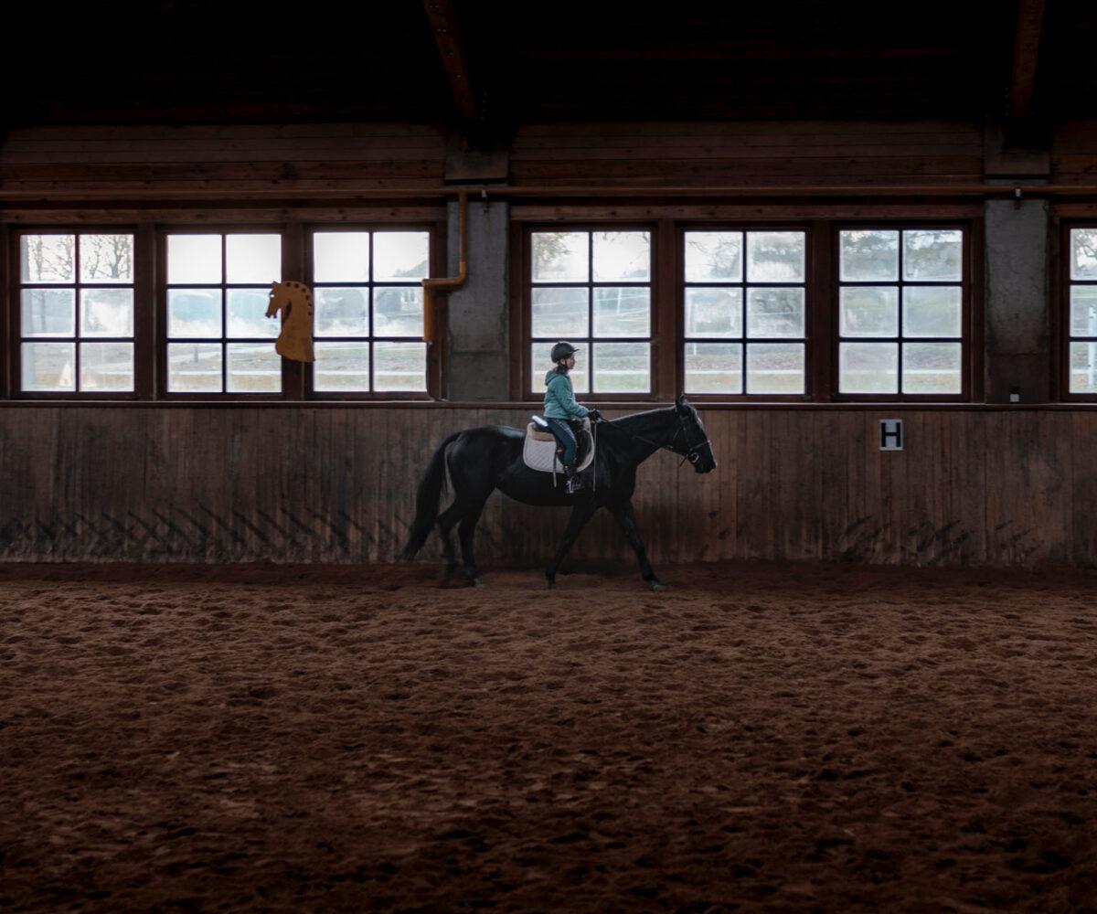 pexels-gantas-vaičiulėnas-3713501